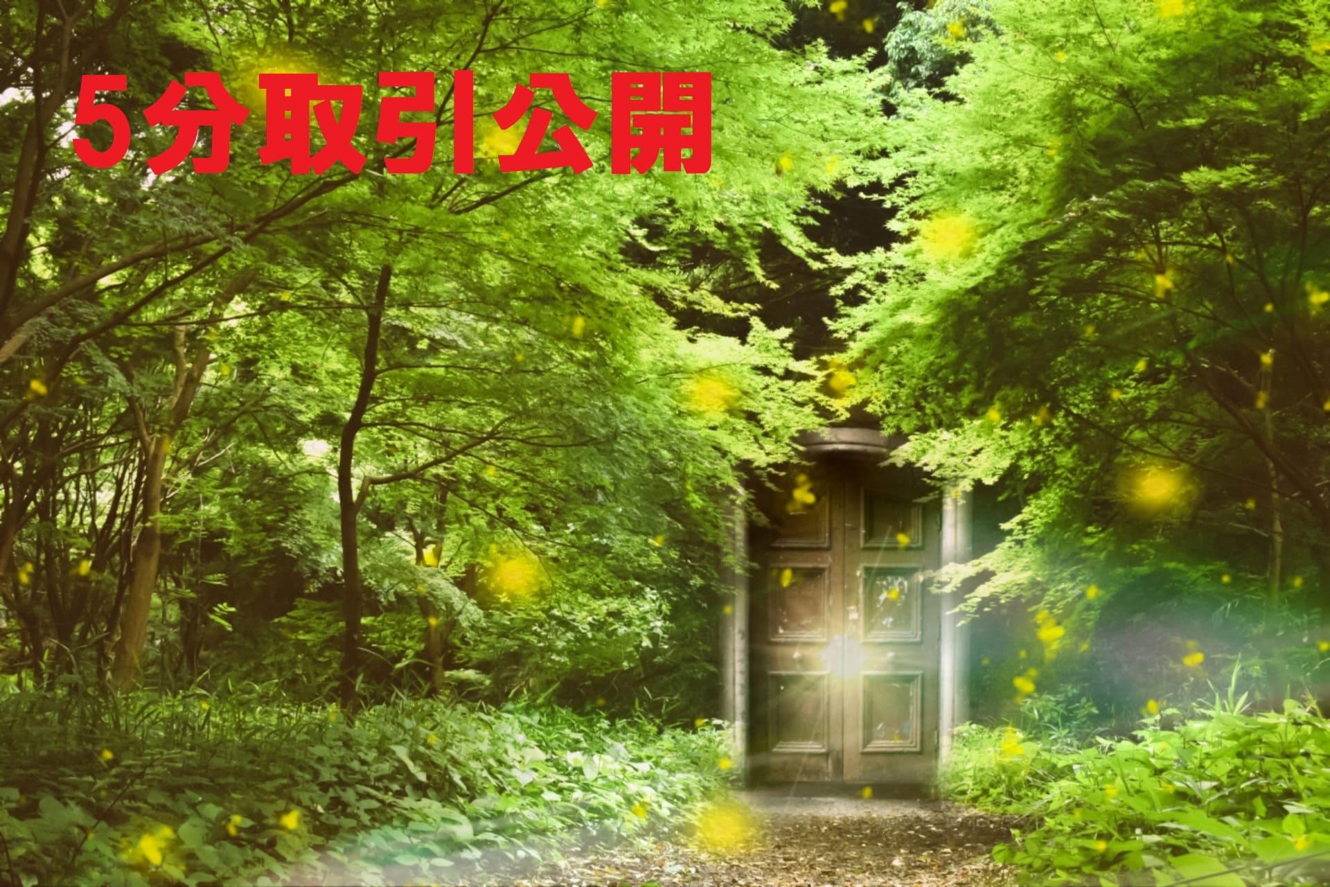 森の中のドア